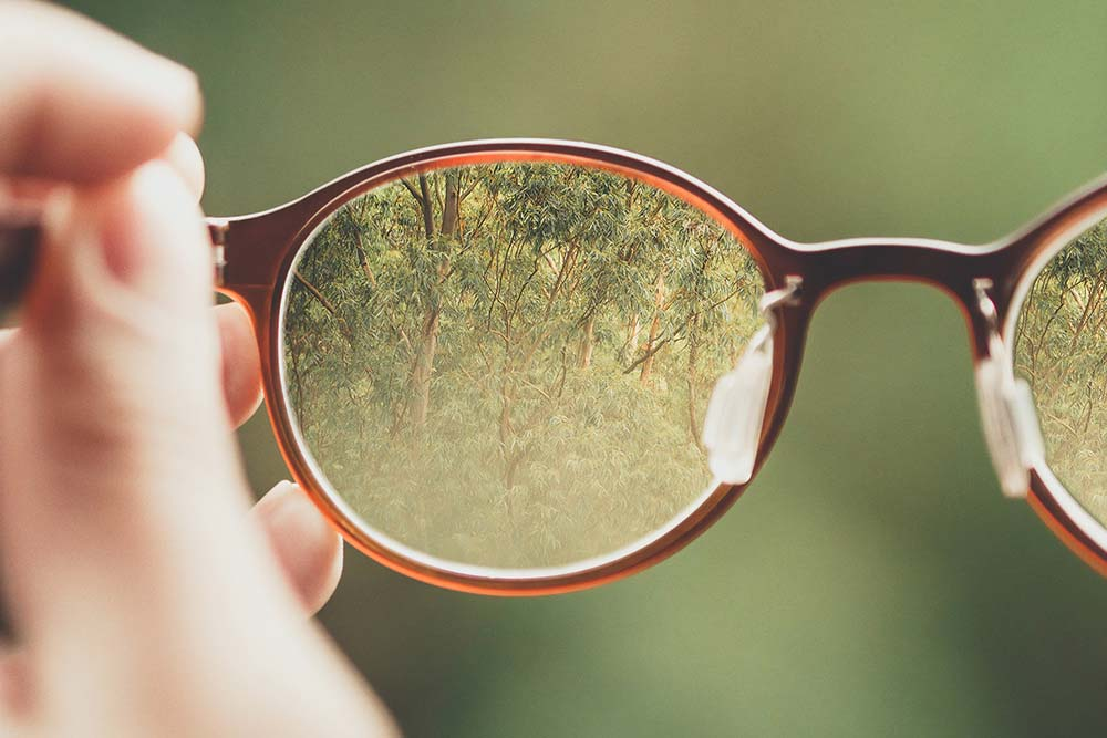 Spectacles bringing image of forest into focus